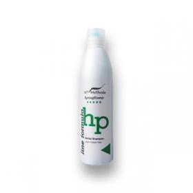 Шампунь для жирных волос Herbal Shampoo